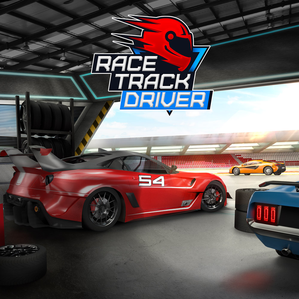 Race Track Driver (SWITCH)
