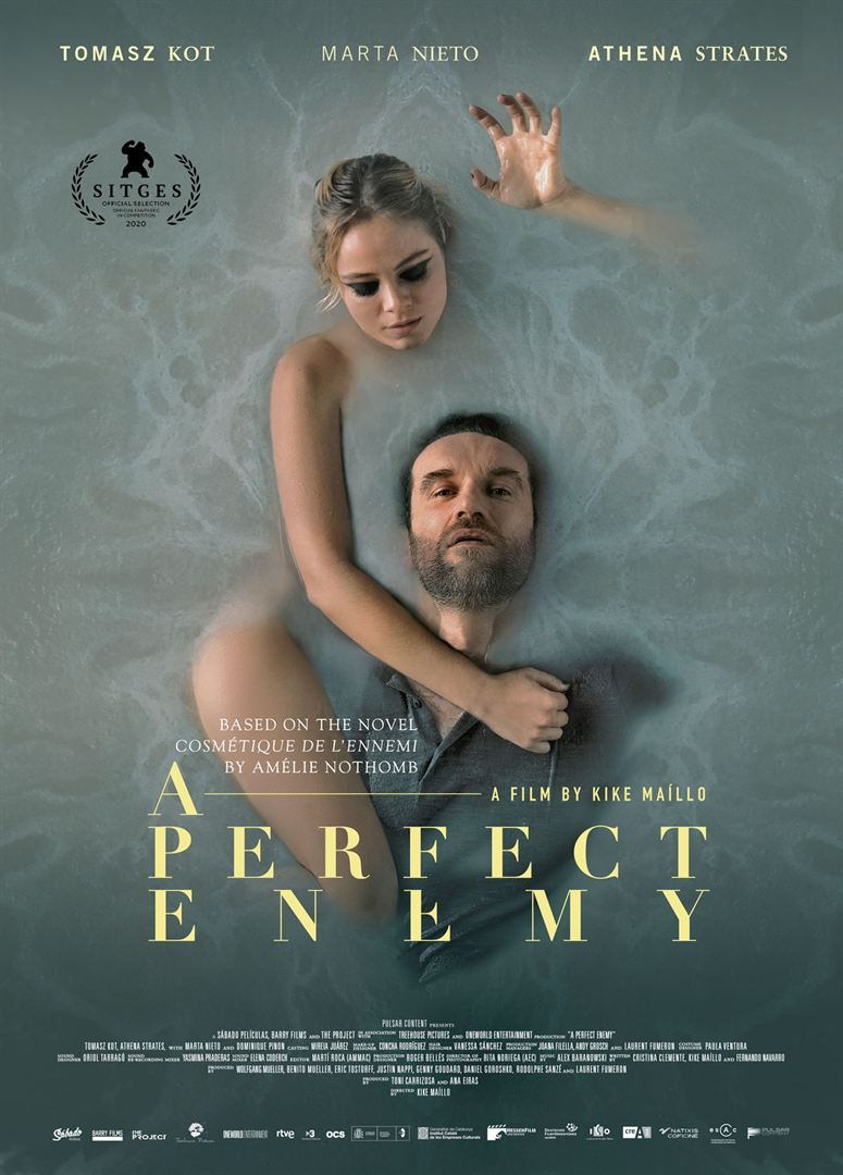 A Perfect Enemy FRENCH WEBRIP LD 2021